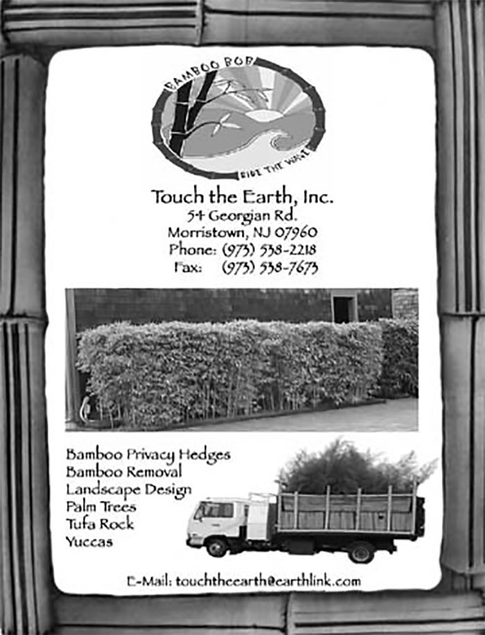 an old add from Bamboo Bob's Touch the earth inc. Idigbamboo.com