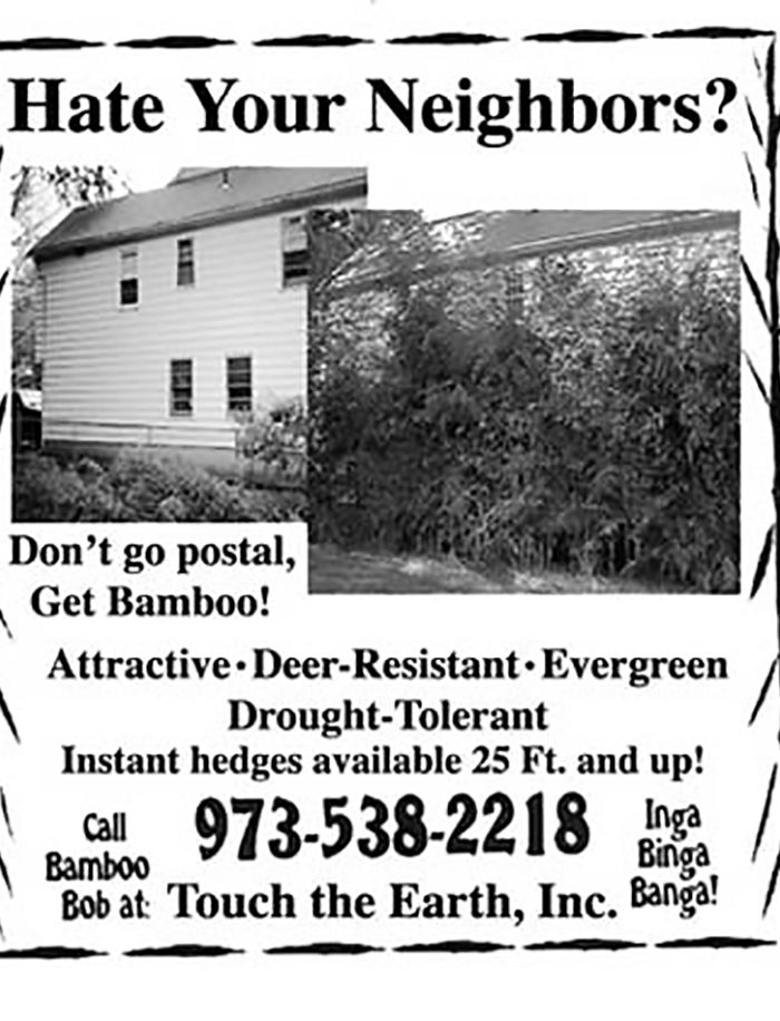 Hate your neighbor? don't go postal, get bamboo! attractive deer resistant, evergreen, drought tolerant instant hedges. Contact bamboo bob about getting the privacy you need today.